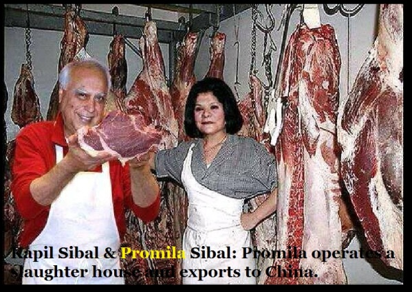 Kapil Sibal and Promila Sibal - Promila operates a slaughter house and exports to China.